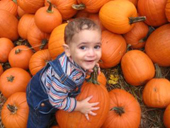 Little Yousuf and the pumpkins