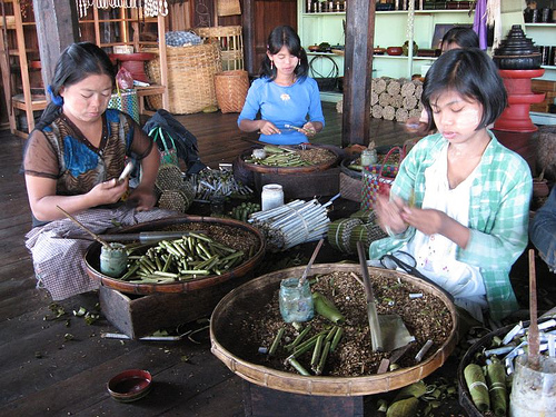 cheroot_making_burma.jpg