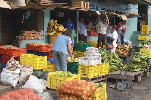 market5.jpg