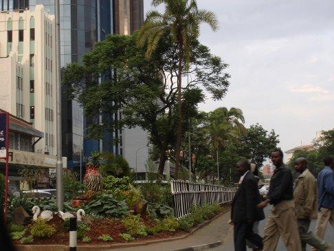 Greening of Nairobi streets