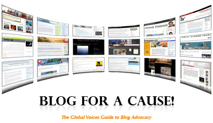 Blog For A cause! Guide (PDF)