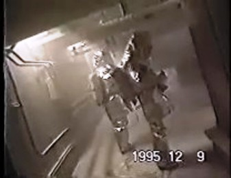 Snapshot from Monju leak video