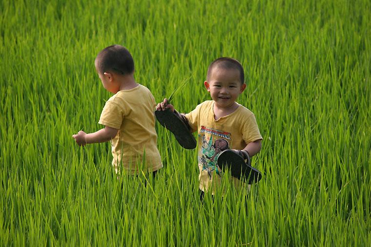 Фотографија од две тајвански деца на пољана