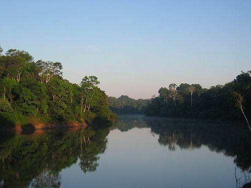 Morning in the Amazon by markg6 used according to Creative commons attribution license