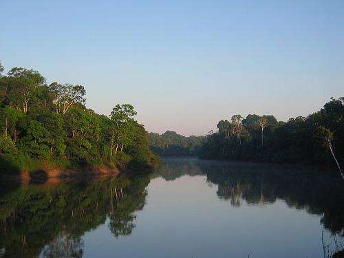 Mattino in Amazzonia, foto di markg6 utilizzata in base alla licenza Creative commons attribution license