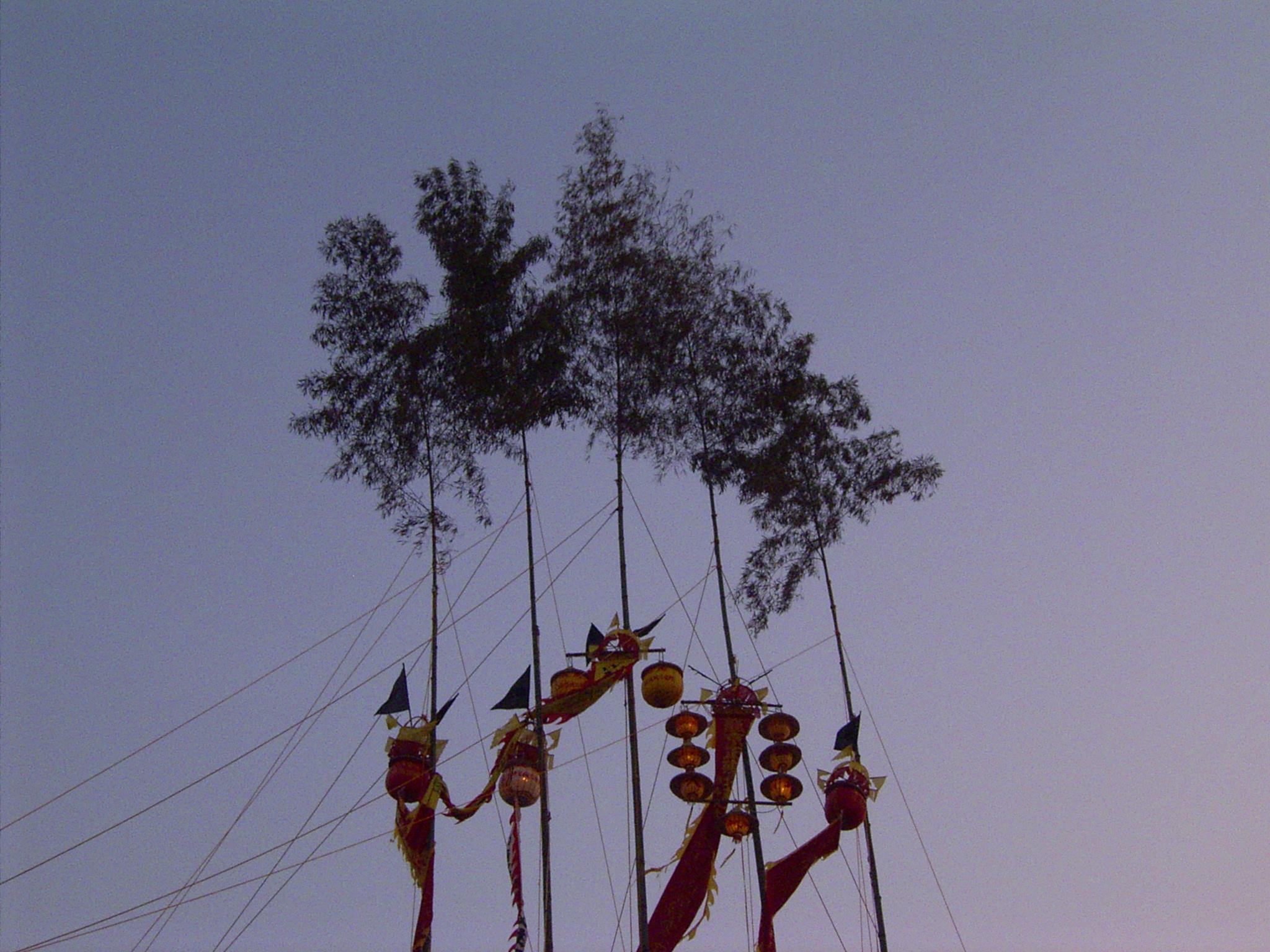 https://globalvoicesonline.org/wp-content/uploads/2008/11/bamboo.jpg