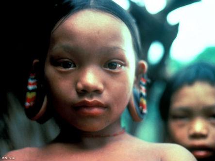 Penan Tribe