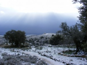 Snow in Beit El (credited to Yishai Fleisher)