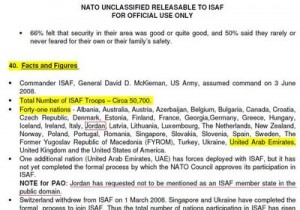 The declassified NATO document obtained by Wikileaks (PDF)