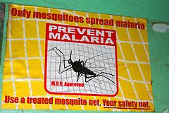 Prevenire la malaria