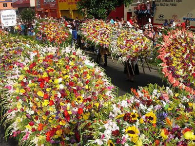 Photo of Silleta Flower Display by Jota Estrada and used under a Creative Commons license.