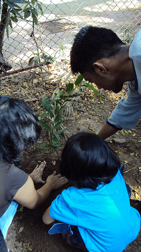 Netizens planting saplings. Image by Bombay Lives