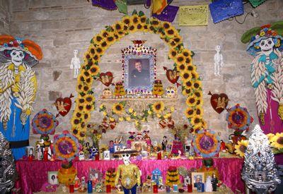 মার্থা ইনেস সাঞ্চেজ নাভারোর তোলা ছবি। অনুমতিক্রমে ব্যবহৃত