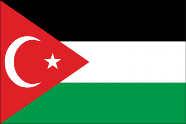 Gaza-Turkey solidarity flag