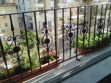 Shadia's garden