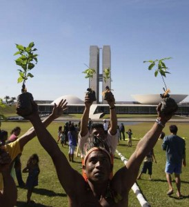 Indigenous community demonstration Brasilia