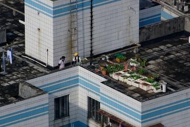 Tetti di Shenzhen