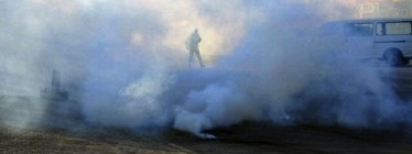 @Awadhi4: Today morning in Nuwaidrat. #Feb14 #Bahrain
