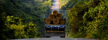 A truckload of timber leaves the Amazon, Brazil. Image by Christian Franz Tragni, copyright Demotix (18/02/2009).