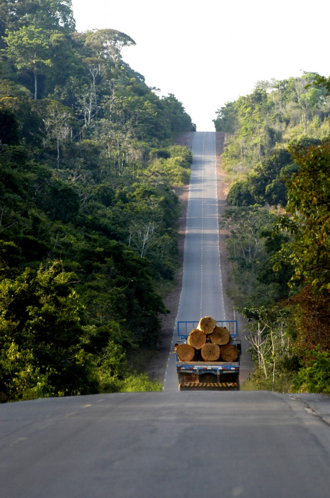 A truckload of timber leaves the Amazon. -- Deforestation and the timber industry on the Amazon. Photo by Christian Franz Tragni, copyright Demotix (18/02/2009)