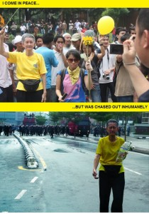 A grandma who joined the rally. From the Twitpic page of @eugeneteoh.