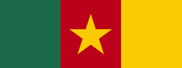 Cameroon flag. Flickr: erjkprunczyk (CC BY-NC-SA 2.0).