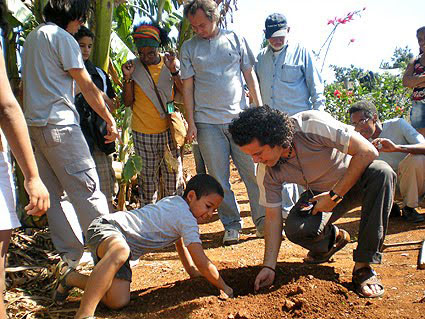 Planting of an Anacagüita