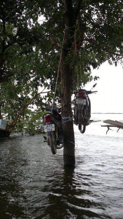 Motorrad im Baum festgebunden