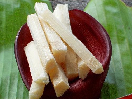 Porzioni di canna da zucchero
