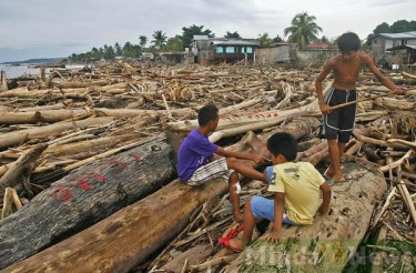 A MindaNews photo shows the logs brought down by the floods to Iligan City from logging sites.