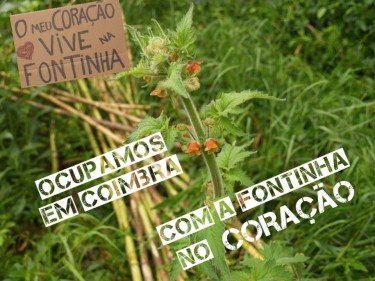 """My heart lives in Fontinha. We occupied Coimbra with Fontinha in our heart"". From the Facebook page Jardins de Abril (Gardens of April)"