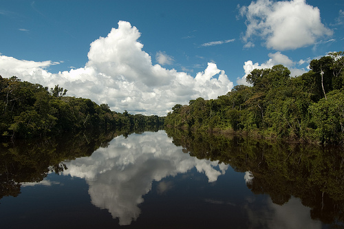Amazon Peru, photo by Pearl Vas  (CC BY 2.0)