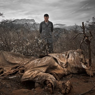 Yao Ming comes face to face with a poached elephant in Northern Kenya. Image by Kristian Schmidt from WildAid Facebook page.