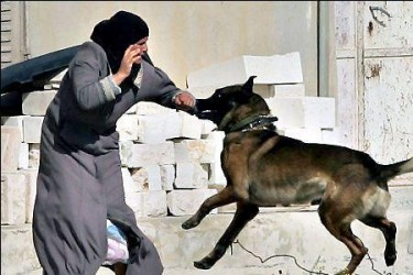 Photograph of a dog biting a Palestinian woman, from the Facebook page I Love Dogs