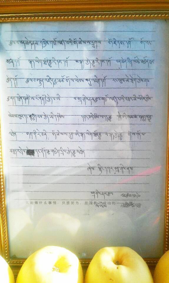 le ultime parole di Nyankar Tashi