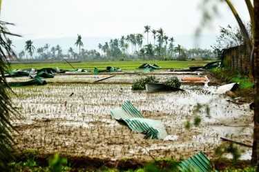 Impact of the storm in Compostela Valley
