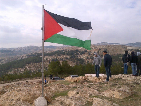 Photograph of the Palestinian flag flown on Bab Al Shams. Photo shared on Twitter by @Lemapal