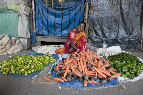 India's 82nd Union budget in parliament enhances the outlays for Scheduled Caste Welfare, farm credit, women development, health, and urban development sectors. Image of an Indian businesswomen by Tumpa Mandal. Copyright Demotix (28/2/2013)
