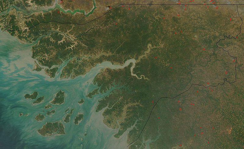 Satellite image of Guinea-Bissau in January 2003. The Islands are known as Bijagos Archipelago. Image in the public domain.
