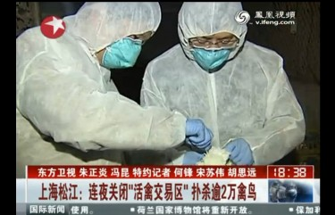 Screen shot from Shanghai's Dragon TV: Health officers draw blood from a pigeon