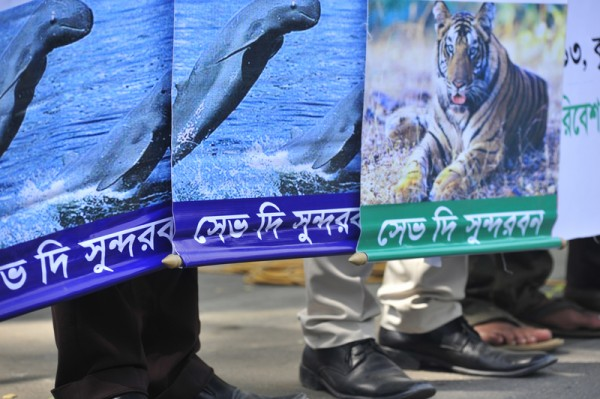 Environment experts, social workers and conscious citizen holding banner-festoon take part at a human Chain in the capital in demand to save Sundarban, the world largest remaining mangrove forests. Image by Firoz Ahmed. Copyright Demotix (21/3/2013)