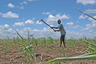 A Mozambican farmer working the land. Photo used on CC BY-NC 2.0 license, by Flickr user Bread for the World
