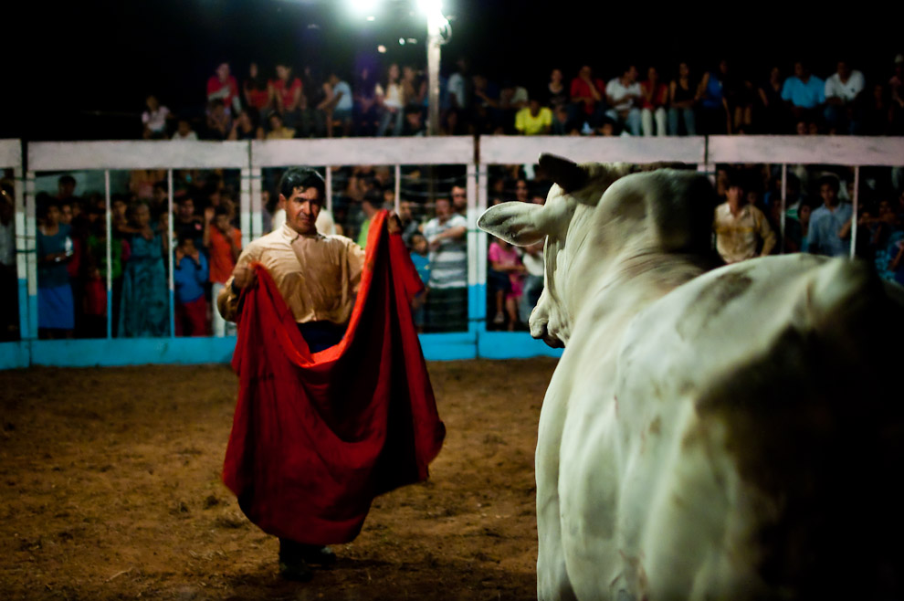 "Bull fight called ""Torín"", where the bull is not killed. San Pedro department in Paraguay. Photo by Elton Núñez by"