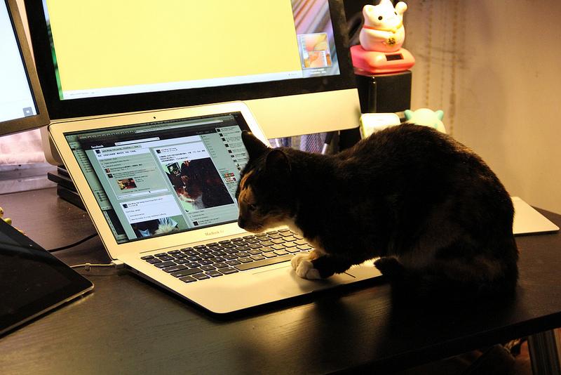 #OccupyMyself : Comment j'ai déserté les médias sociaux
