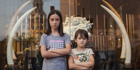 Two girls, Lucy Lan Skrine, aged 11, and Christina Seigrist, aged 8, who both live and go to school in Hong Kong, launched a petition at AVAAZ,org demanding the Hong Kong Government to destroy its entire stockpile of confiscated ivory, as a symbolic gesture to highlight the plight of tens of thousands of elephants that are being killed to supply the ivory trade.