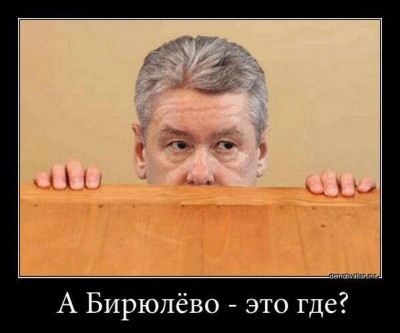 """Where's Biryulyovo?"" asks a scared Sergey Sobyanin, Moscow's mayor, in a recent demotivator. Anonymous image distributed online."