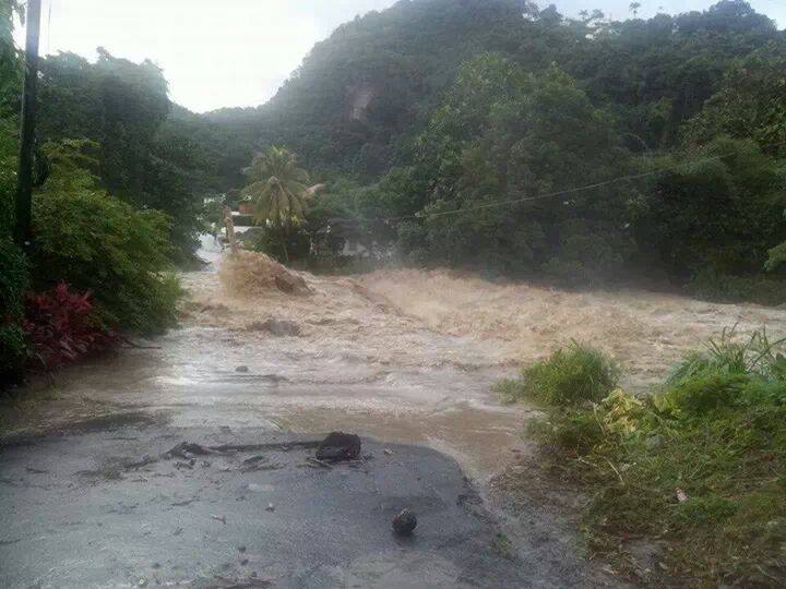 Elmshall Bridge in Dominica