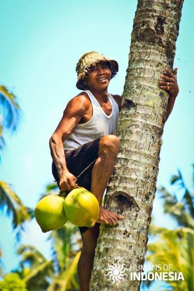 """Those young coconuts look fresh?"" ""Oh, please take one if you like"" ""Thank you so much. Why don't you just drop them down? Seems heavy to carry like that"" ""Don't you see that few kids play under these trees? I am worry these coconuts would hit them."" Photo from Humans of Indonesia Facebook page"