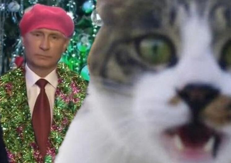 Putin's New Year address cat-bombed. Anonymous image distributed online.