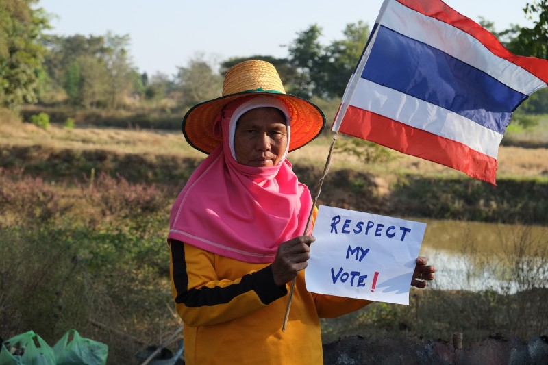 A Thai farmer holds a sign that reads 'Respect My Vote' as she poses with a Thai national flag. Photo by Matthew Richards, Copyright @Demotix (1/15/2014)